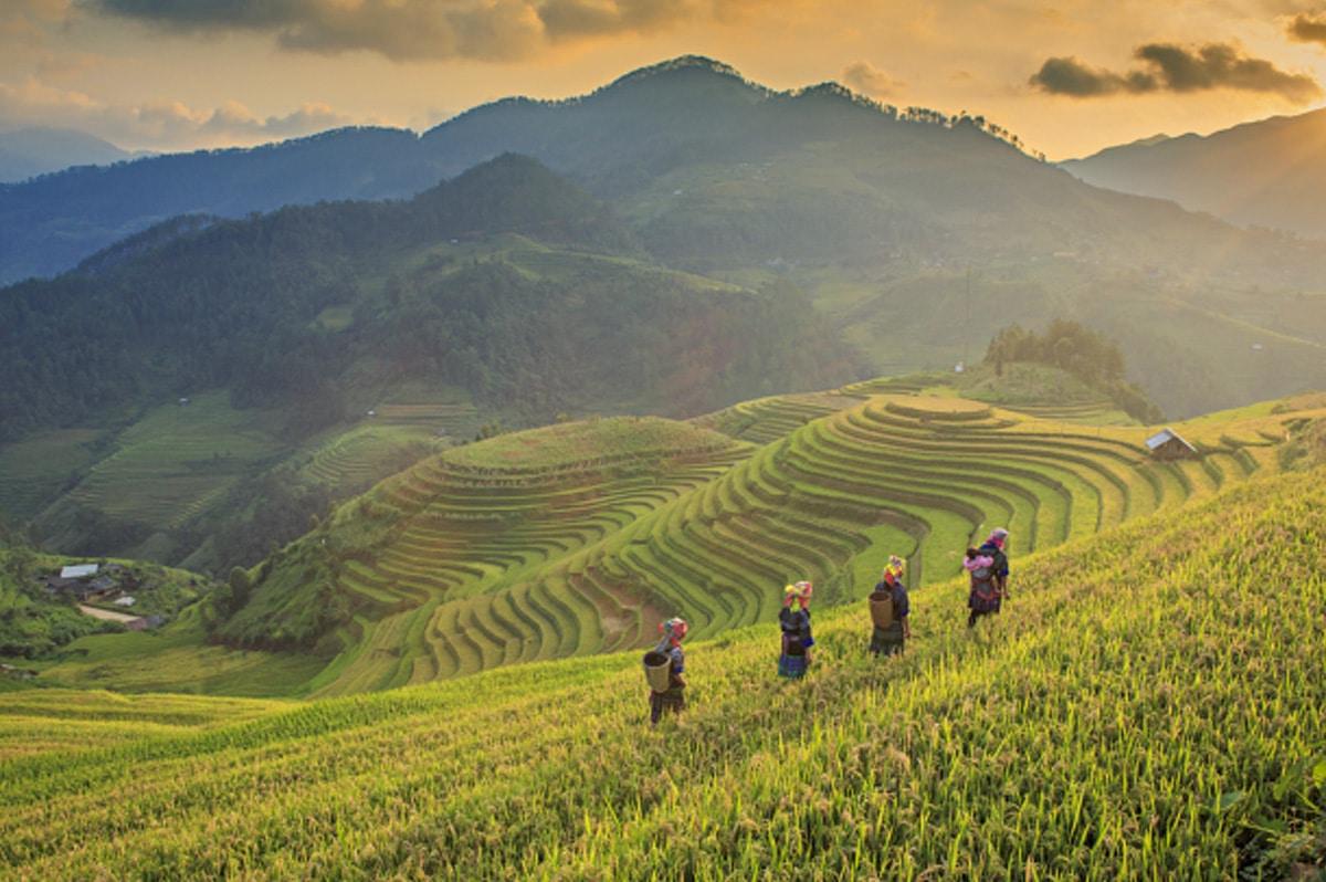 ซาปา และมุยเน่ ประเทศเวียดนาม Sapa, Muine - Vietnam