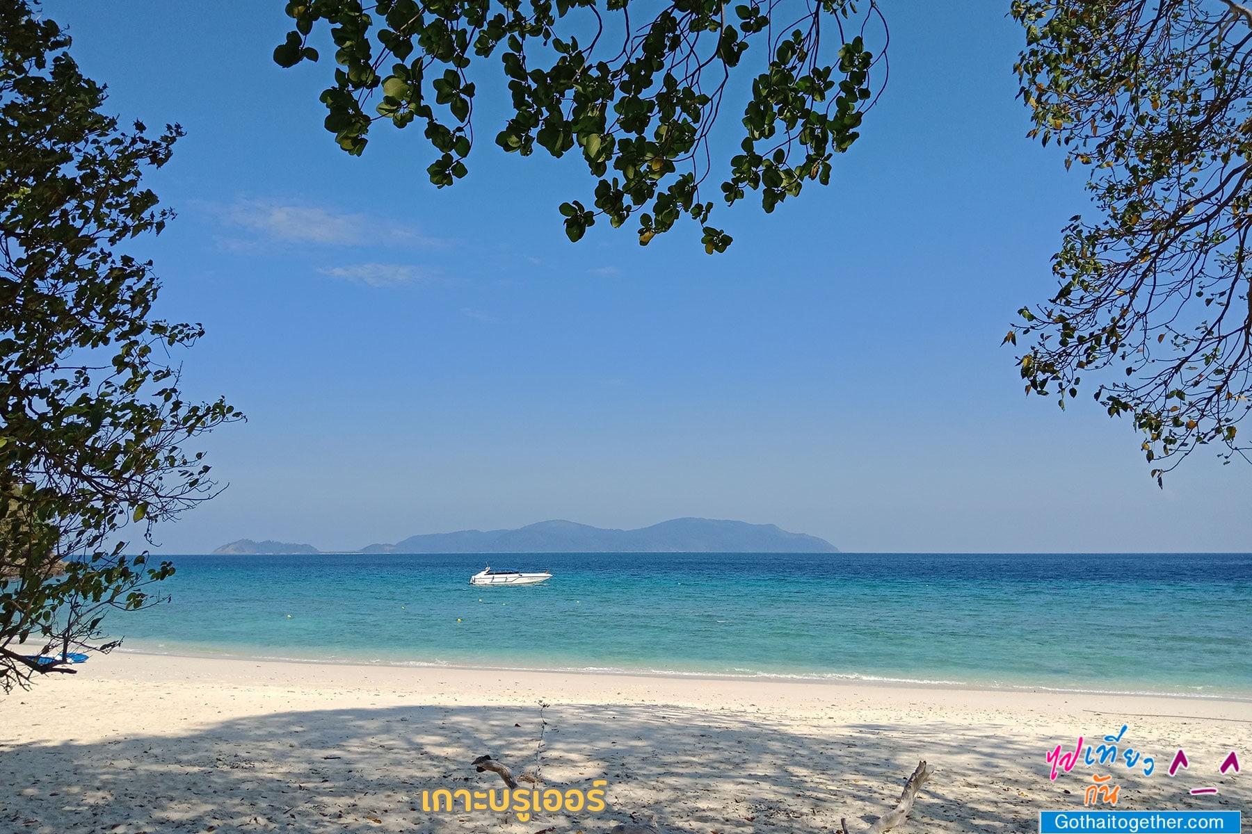 เกาะบรูเออร์ โลกใต้ทะเล สดใหม่ อันสวยงาม สายดำน้ำควรต้องมาเช็คอิน 36