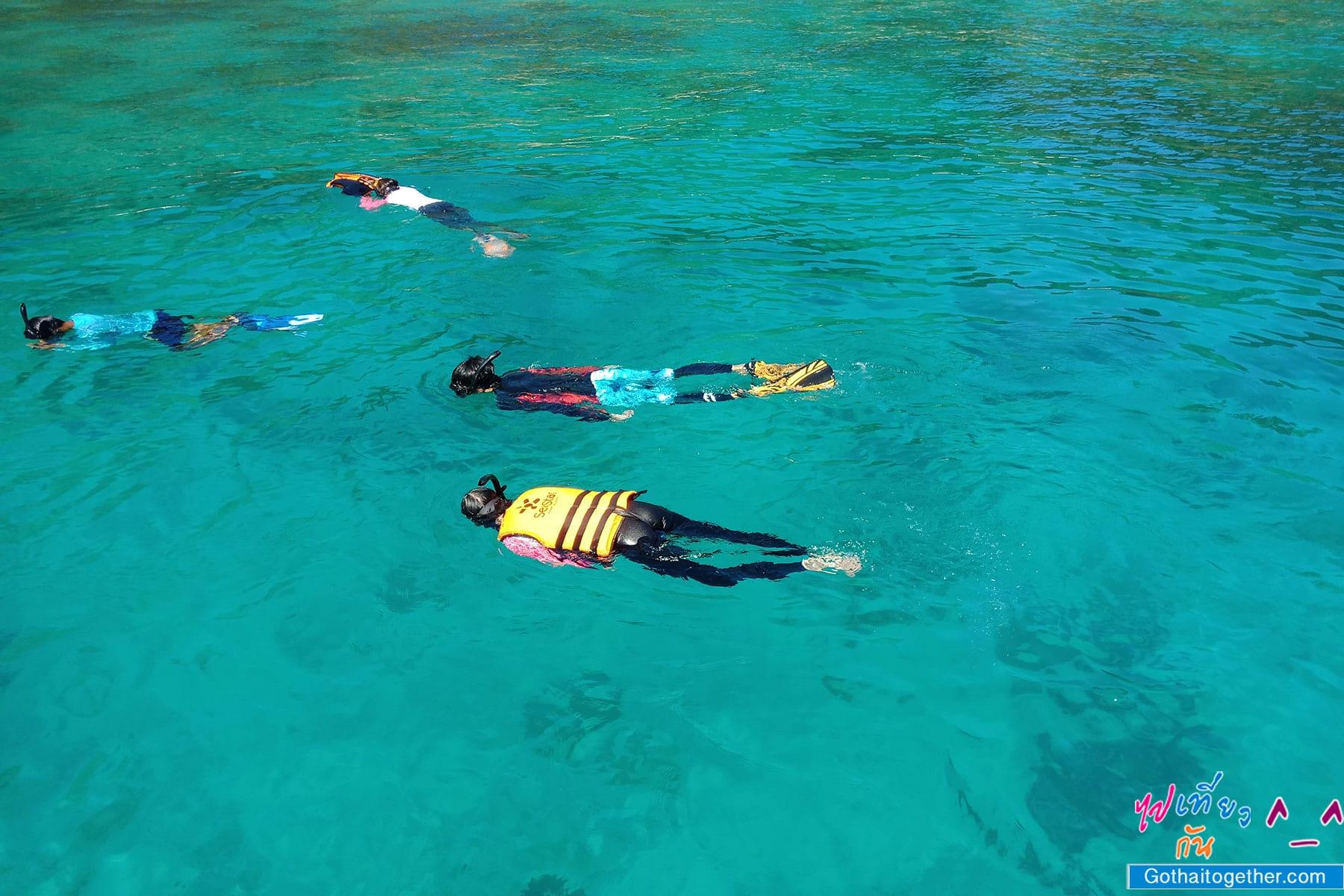 เกาะบรูเออร์ โลกใต้ทะเล สดใหม่ อันสวยงาม สายดำน้ำควรต้องมาเช็คอิน 37