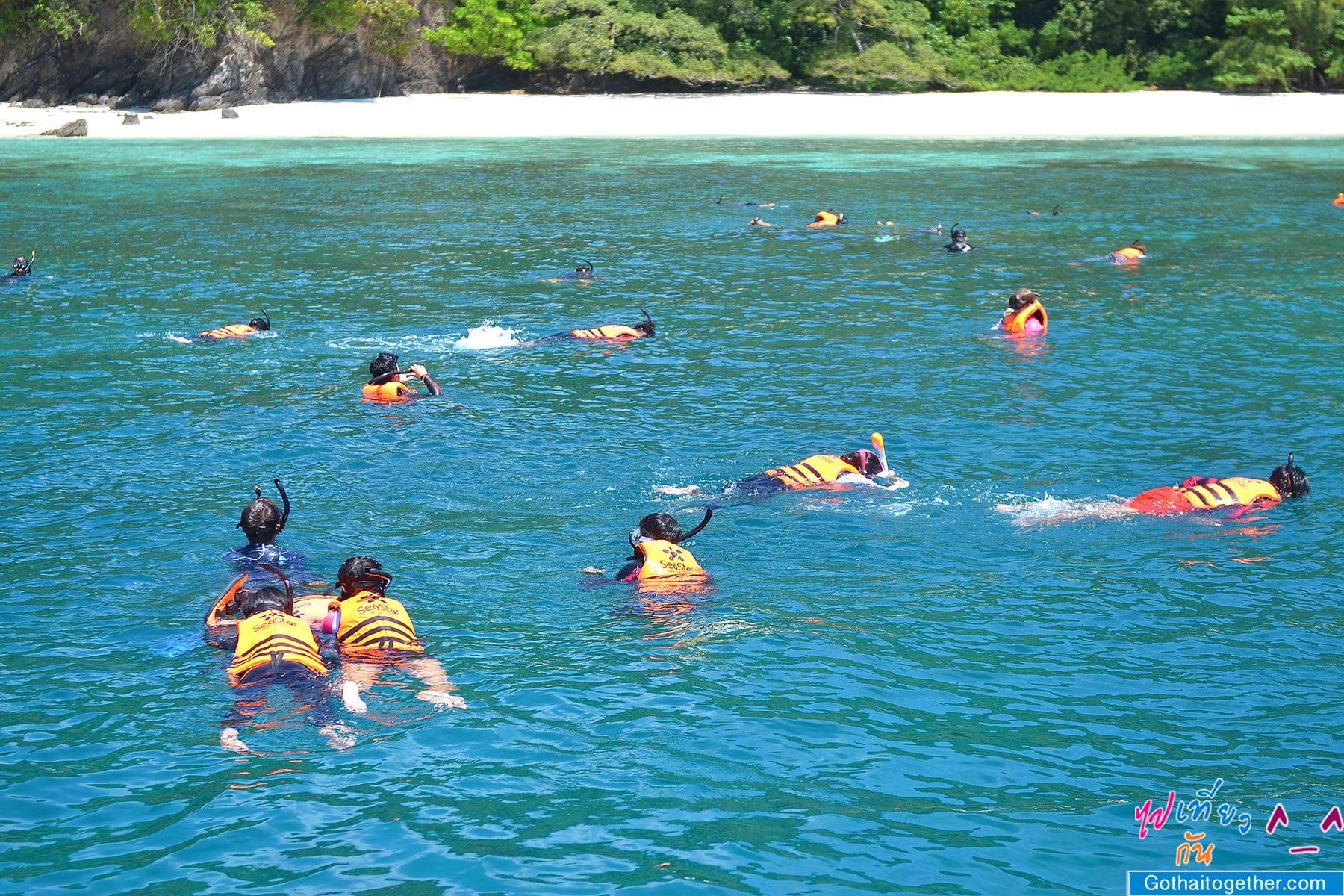 เกาะบรูเออร์ โลกใต้ทะเล สดใหม่ อันสวยงาม สายดำน้ำควรต้องมาเช็คอิน 40