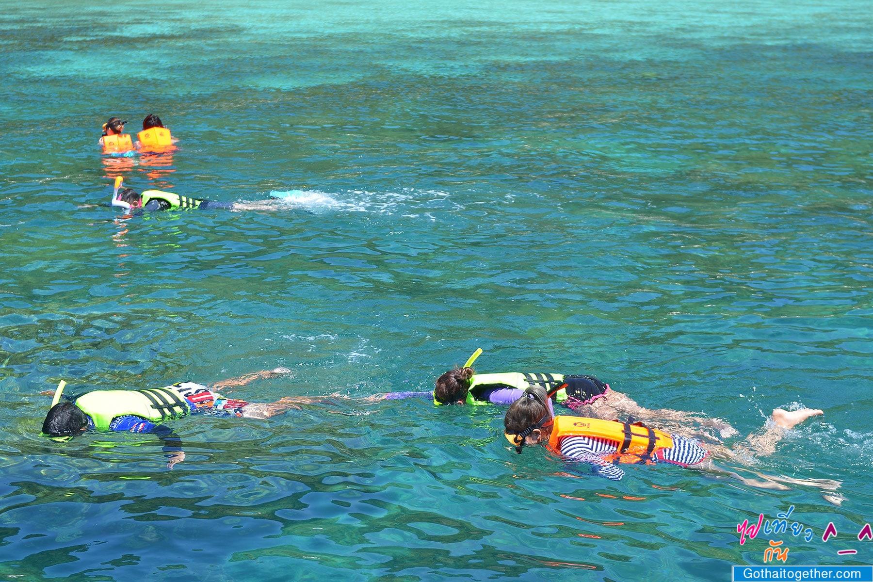 เกาะบรูเออร์ โลกใต้ทะเล สดใหม่ อันสวยงาม สายดำน้ำควรต้องมาเช็คอิน 42