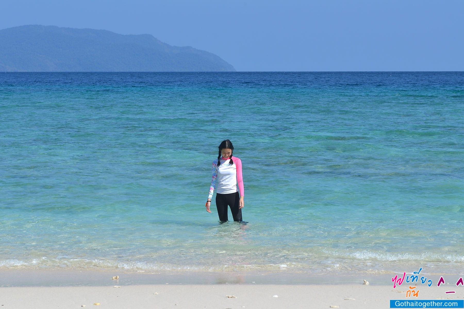 เกาะบรูเออร์ โลกใต้ทะเล สดใหม่ อันสวยงาม สายดำน้ำควรต้องมาเช็คอิน 46
