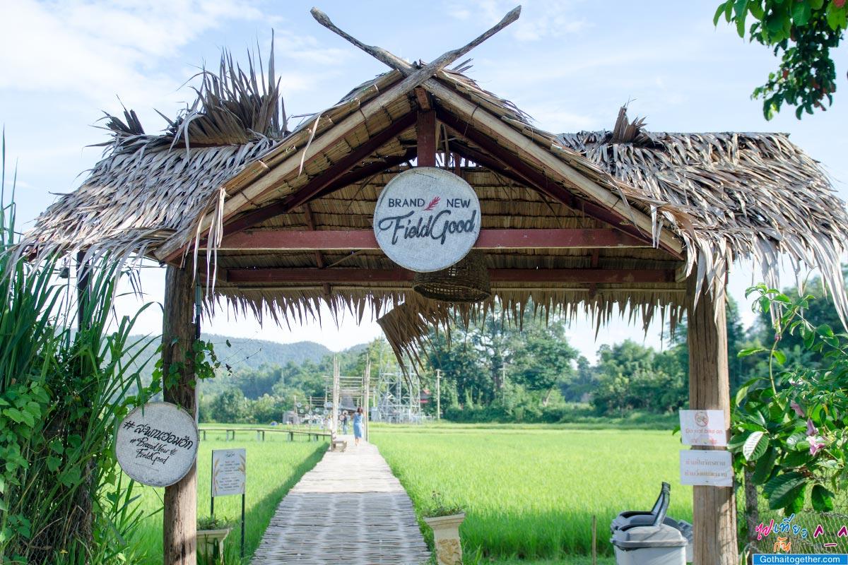 Chiangmai Chill Out เที่ยวสนุก สไตล์ ไปเที่ยวกัน Gothaitogether 82
