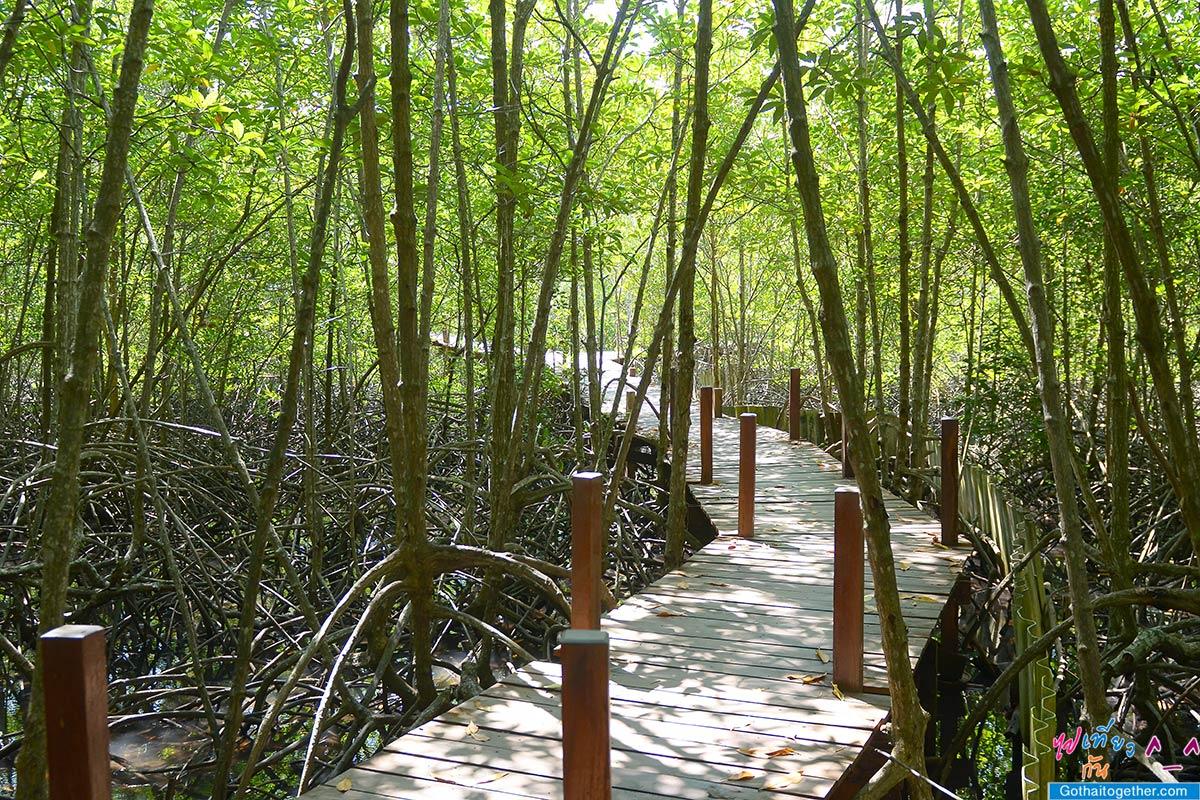 12 ที่กินเที่ยว ตราดจันระยอง เส้นทางตามรอยมาตรฐานการท่องเที่ยวไทย 171